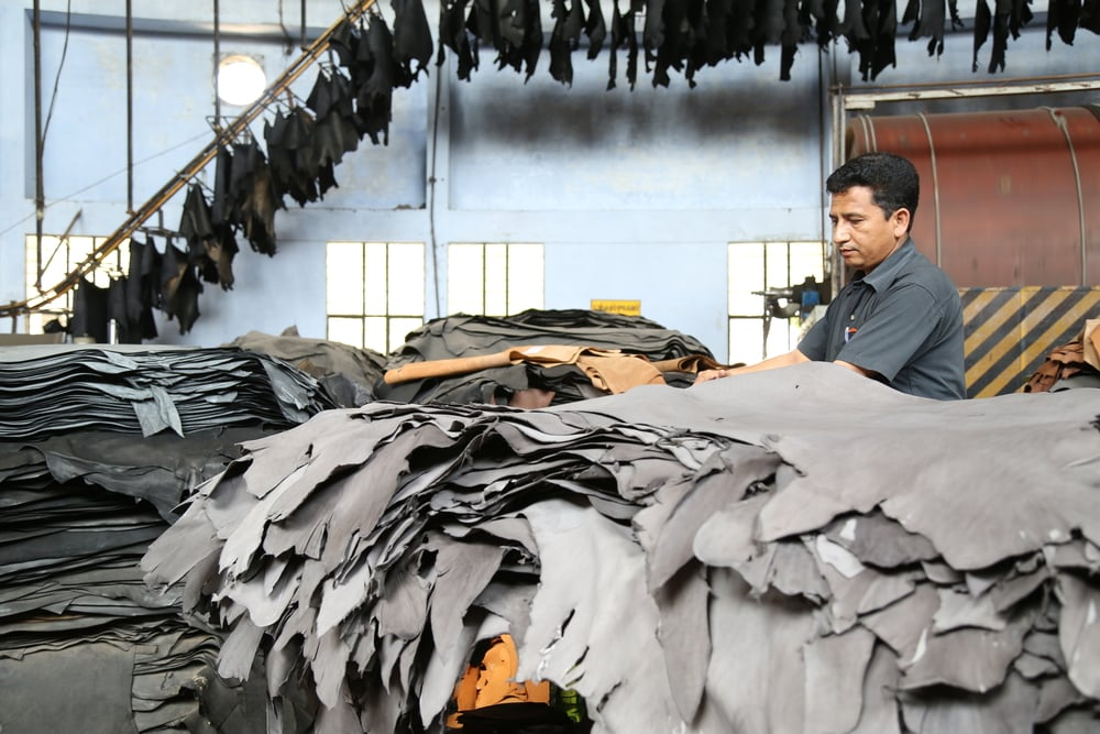 Glimpses of the tannery at Prachi Leathers
