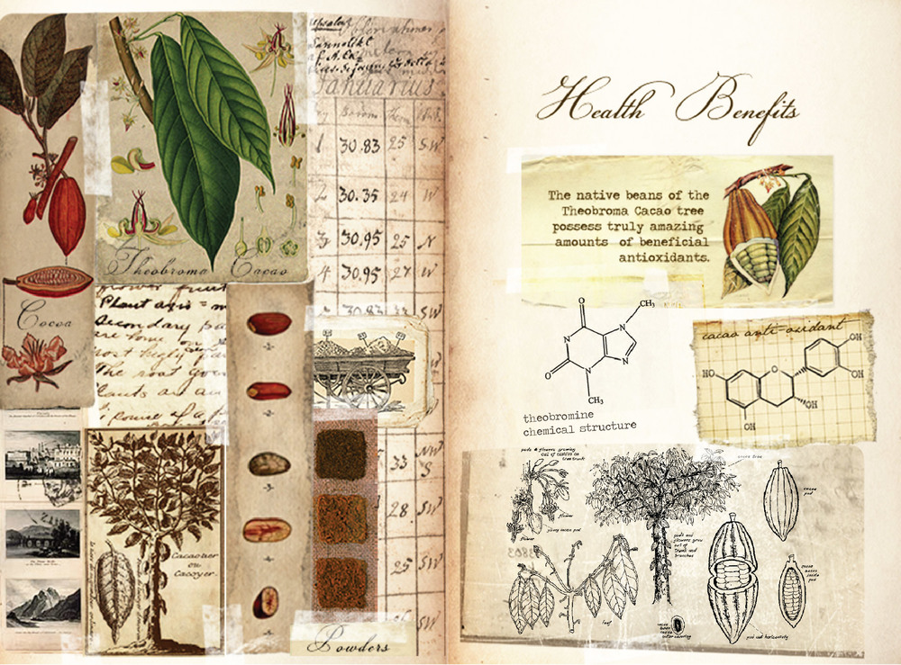 CacaoPrieto_Booklet_CS5-07.jpg