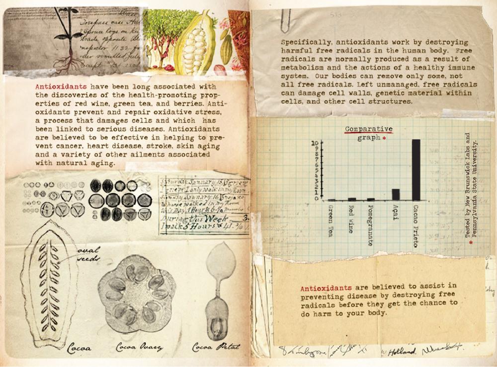 CacaoPrieto_Booklet_CS5-08.jpg