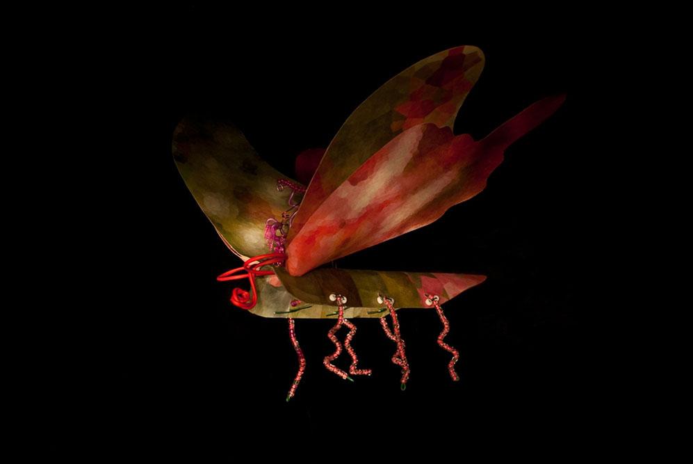 Copy of Moth 3