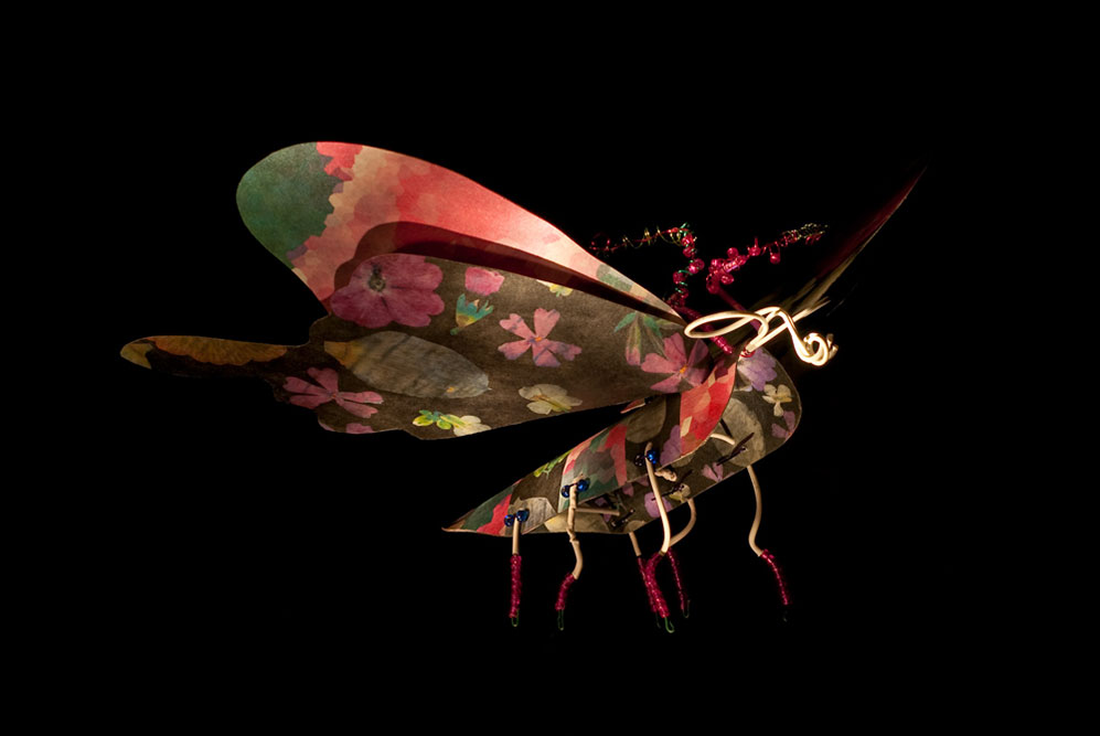 Copy of Moth 2