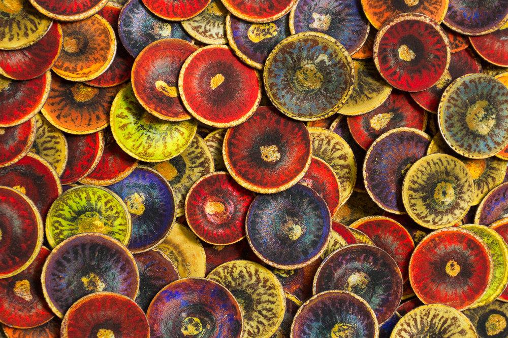 Oak acorn caps