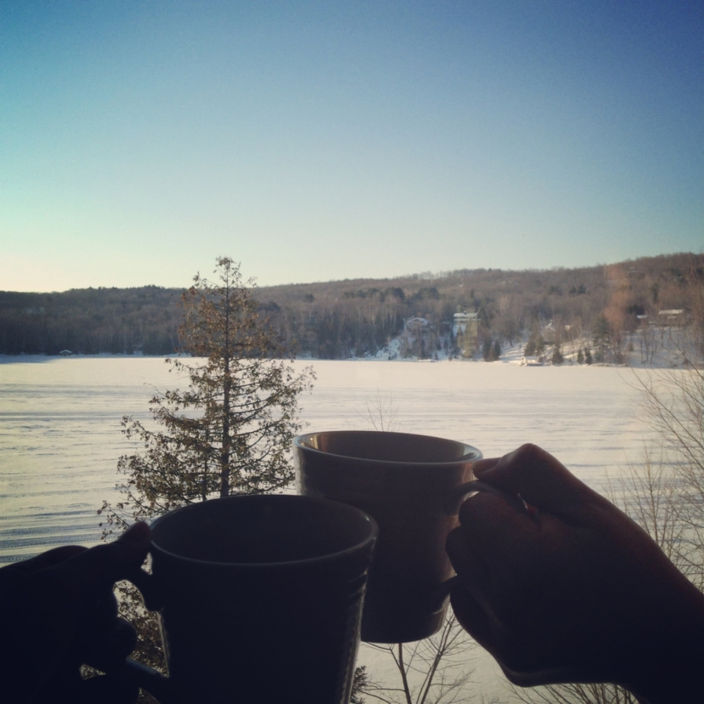 Coffee every morning in front of this view made our winter blues much more tolerable.