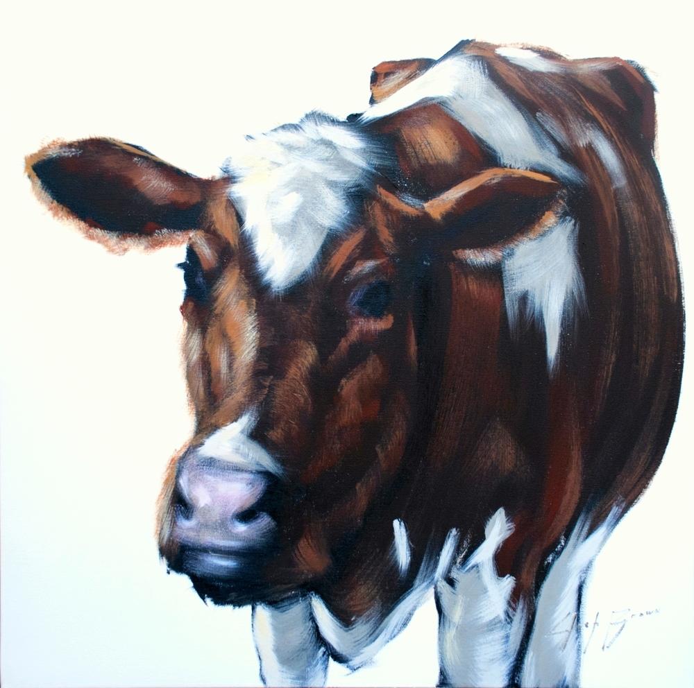Cow on White, 30x30