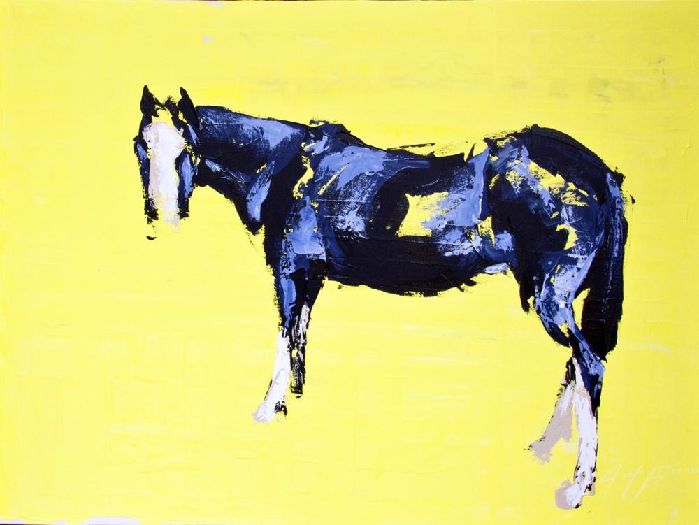 Single Yellow Horse, 36x48