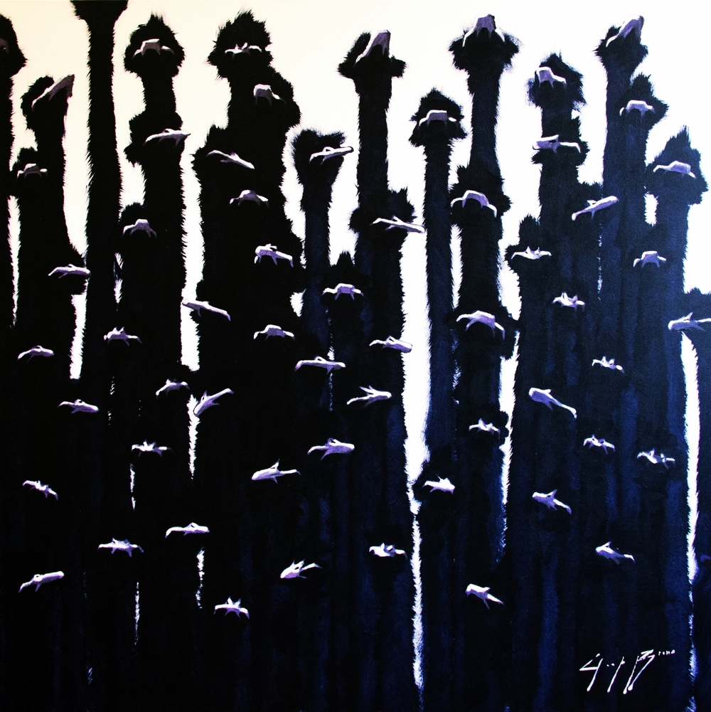 Ostrich Field, 48x48