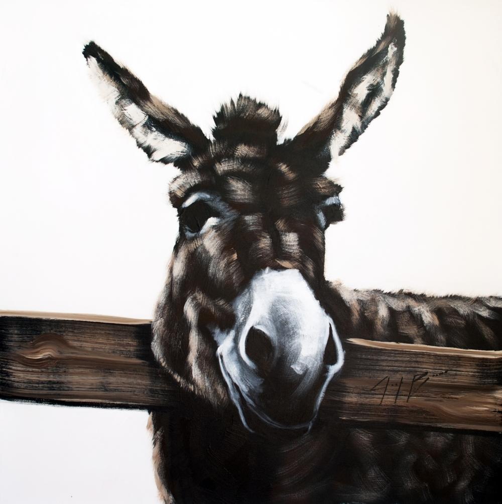 DonkeyOnTan_48x48.jpg