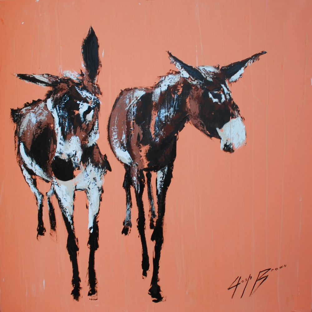 Two Donkey on Peach, 48x48