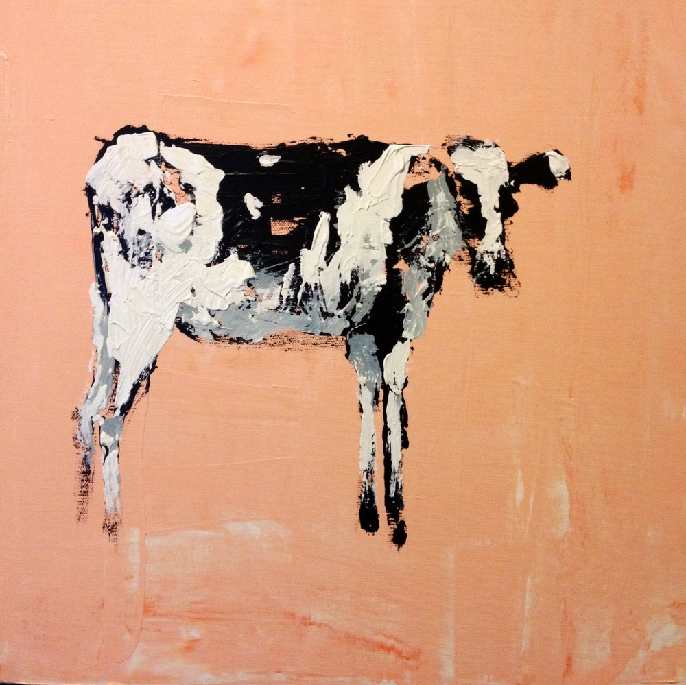 Cow on Pink, 16x16