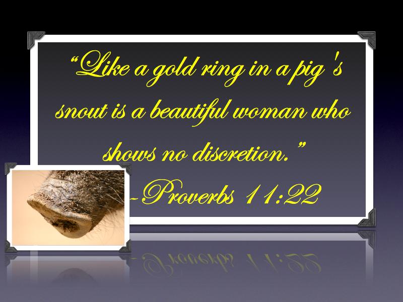 Proverbs 11.22.001