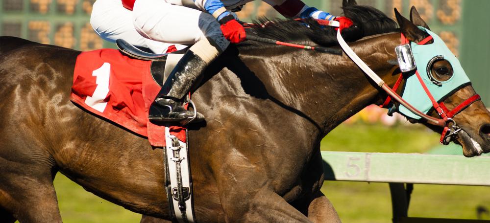 racehorses.com