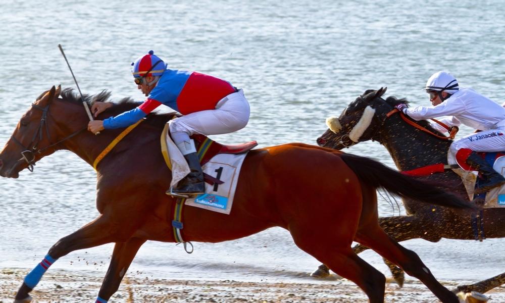 Racehorses.com BabyTalk Blog #22