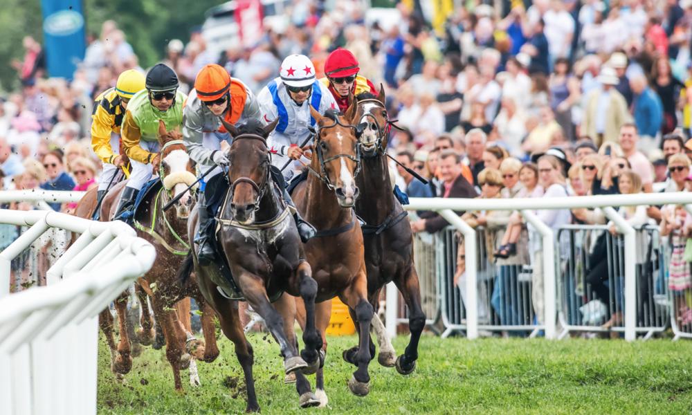 Racehorses.com - BabyTalk blog #24