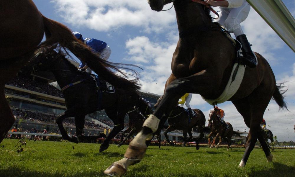 BabyTalk Racehorses blog