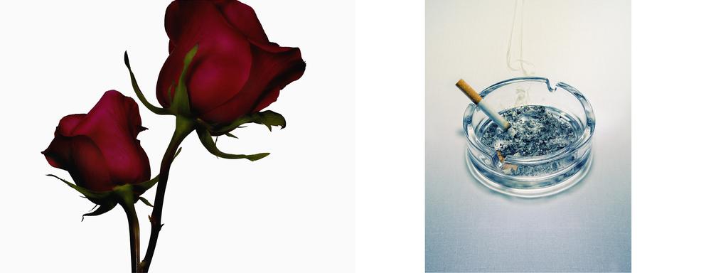 Red_Roses_15.jpg