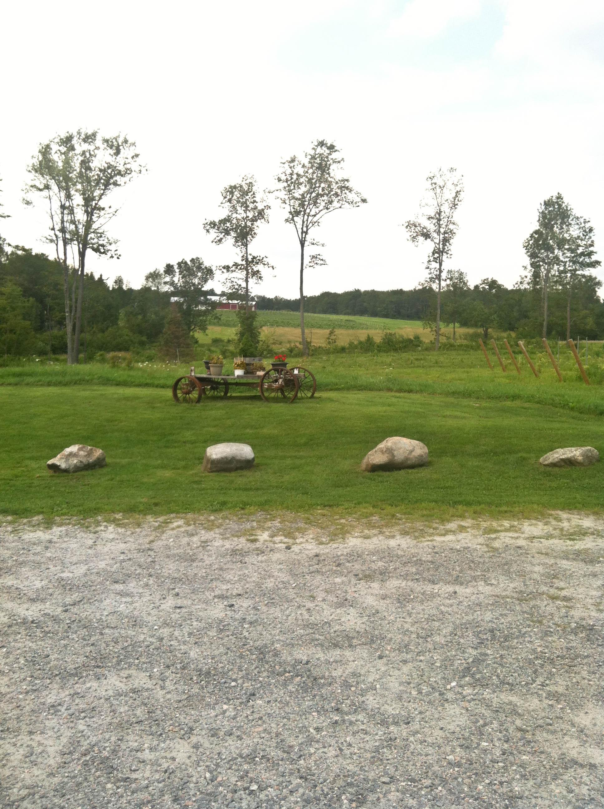 vineyard wagon