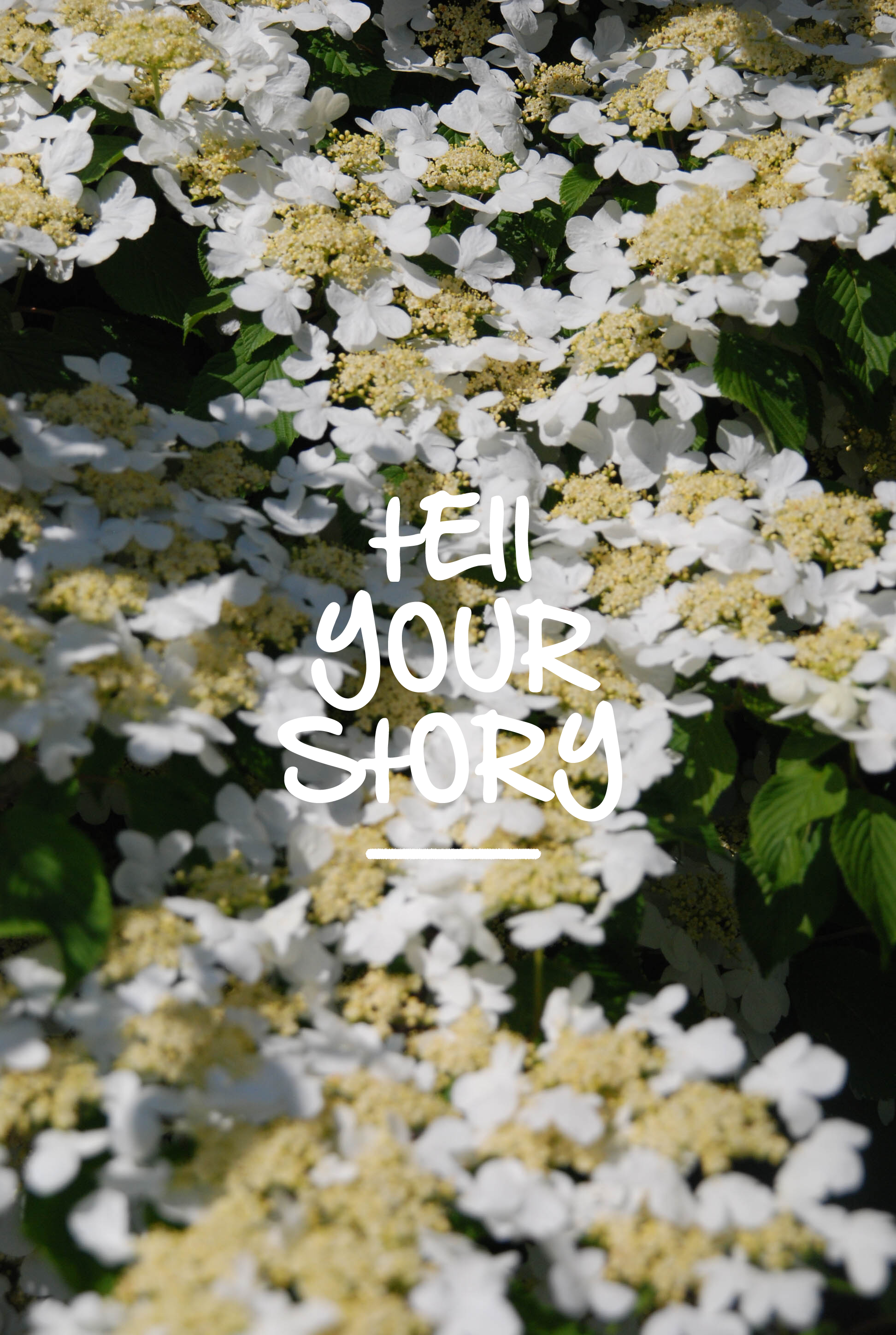 TellYourStory_Flowers