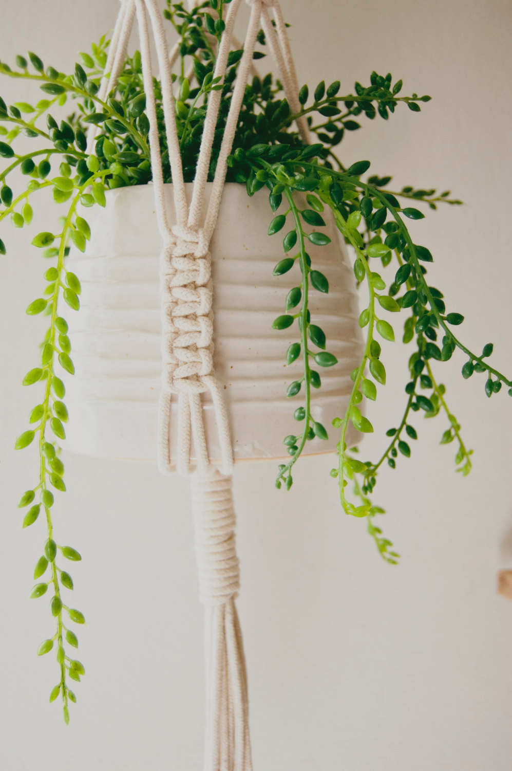 cotton-wood-plant-hanger-zoon-bottom.jpg