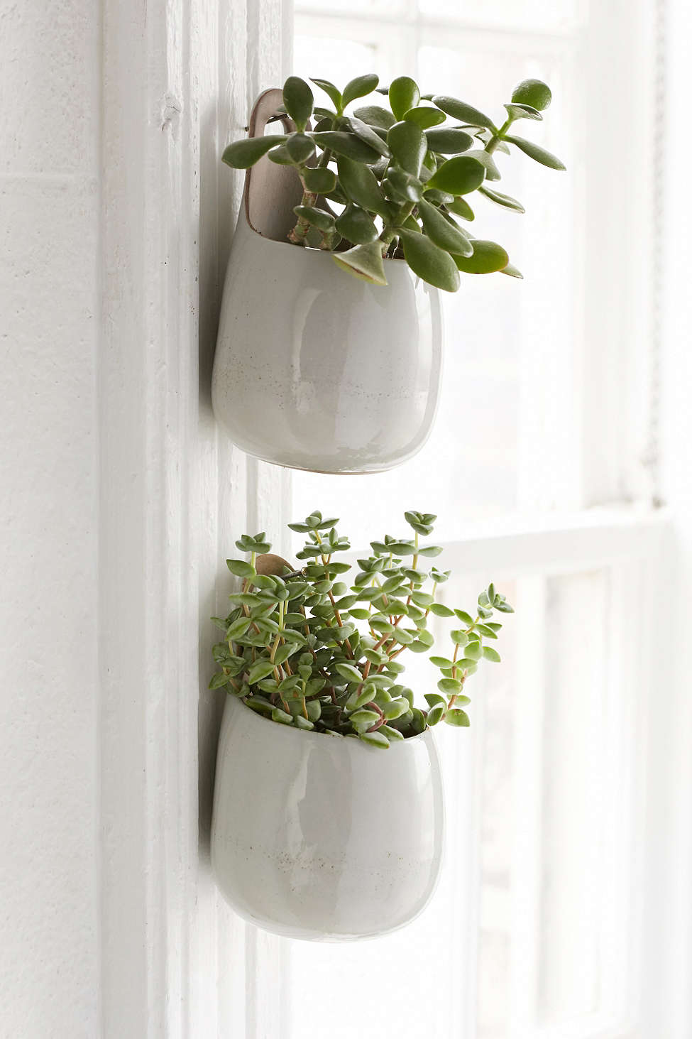 herb-planter-urban-outfitters.jpg