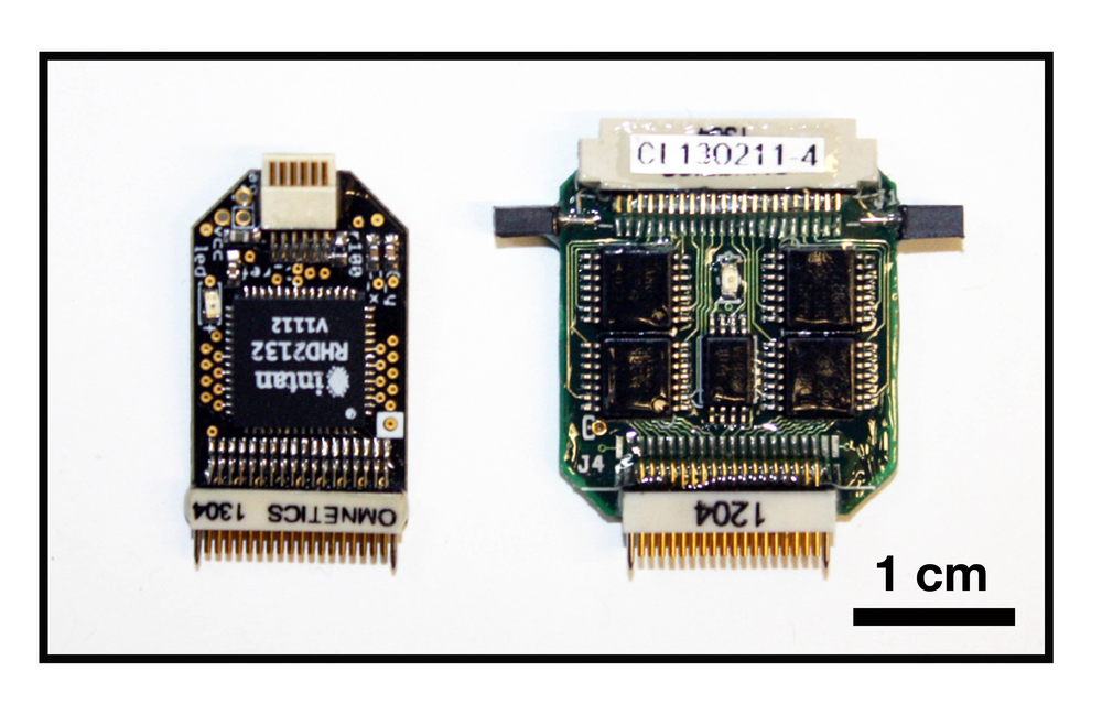Open Ephys headstage (left) and Neuralynx headstage (right) used for the test. The Open Ephys headstage is based on the Intan RHD2132 amplifier chip. It measures 25 x 13.5 mm and weighs 1.0 g. The Neuralynx headstage is based on the Analog Devices AD8643 chips (we think). It measures 27 x 21 mm and weighs 2.3 g.