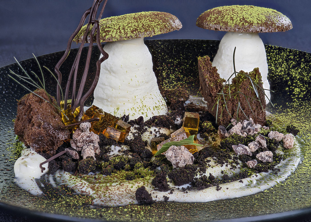 Tira-mushroom - coffee, mascarpone, lady fingers, branches, flourless chocolate cake