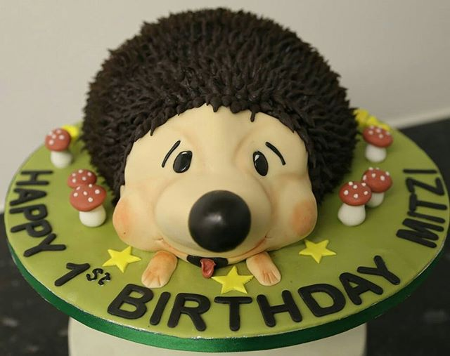 Hedgehog Cake #hedgehogs #chocolatecake #birthdaycake #peartreecakessolihull #shirleycakemaker #peartreecakeco