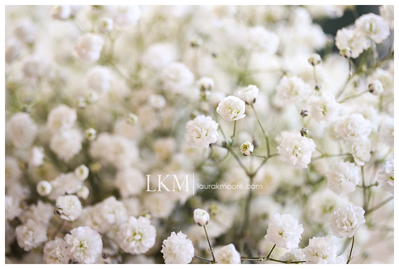 Norco-Southern-California-Wedding-Photographer-Country-Chic-Theme-Laura-K-Moore-_0065