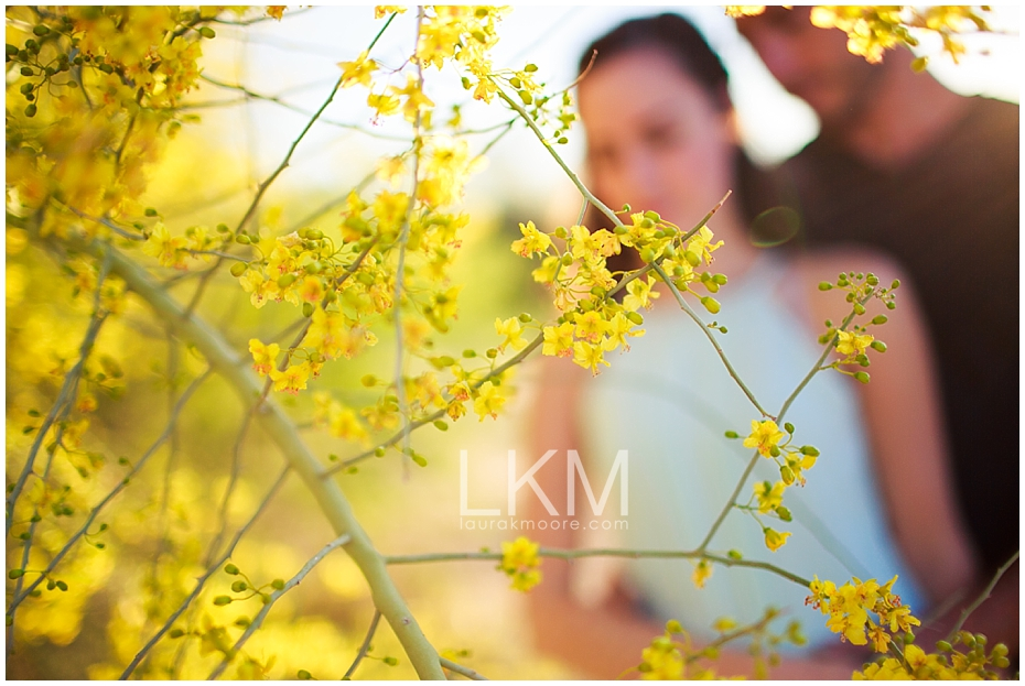 Tucson-arizona-engagement-session-palo-verde-yellow-flowers-_0012.jpg