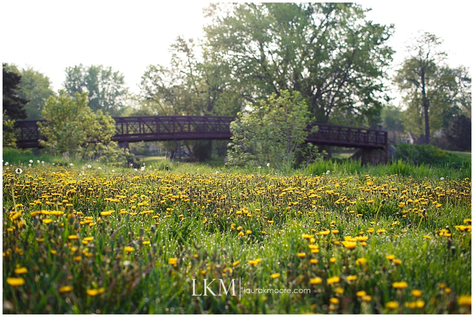 Milwaukee-Wedding-Photographer-Laura-K-Moore-KUHLOW_0153.jpg