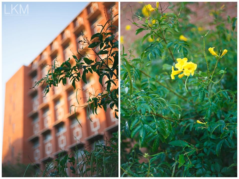 University-Arizona-Senior-Portraits-MEGHAN_0027.jpg