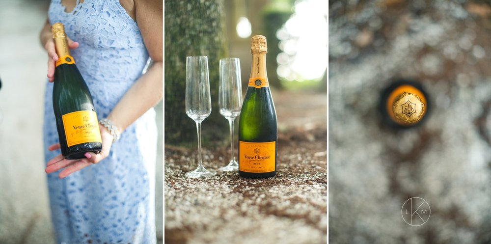 champagne-engagement-session-pictures-orlando-florida-luxury