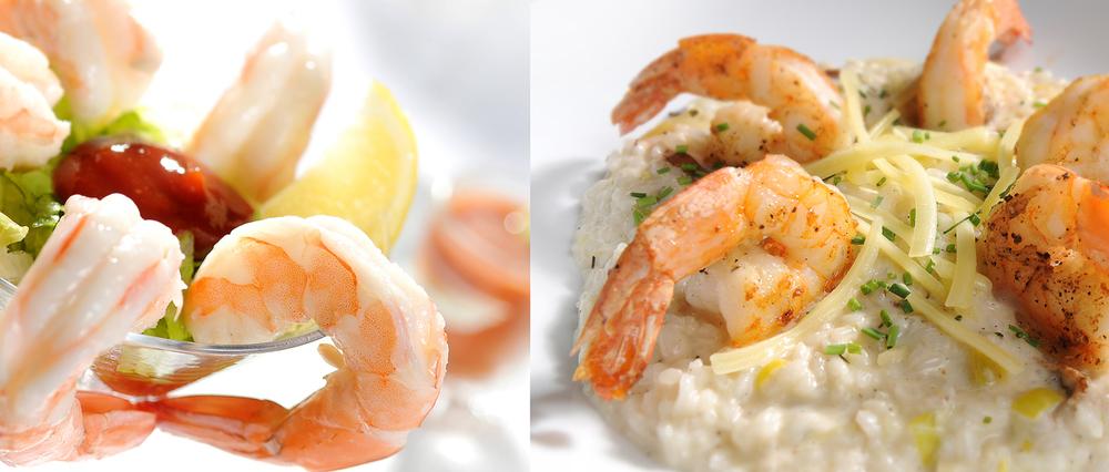 26 shrimp copy 5.jpg