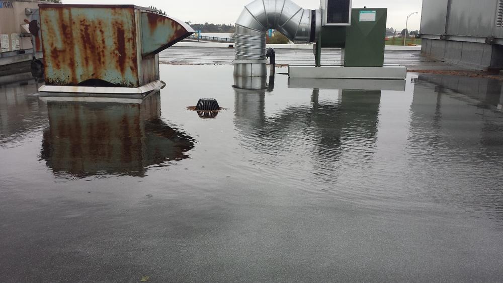 flooded roof (1).jpg