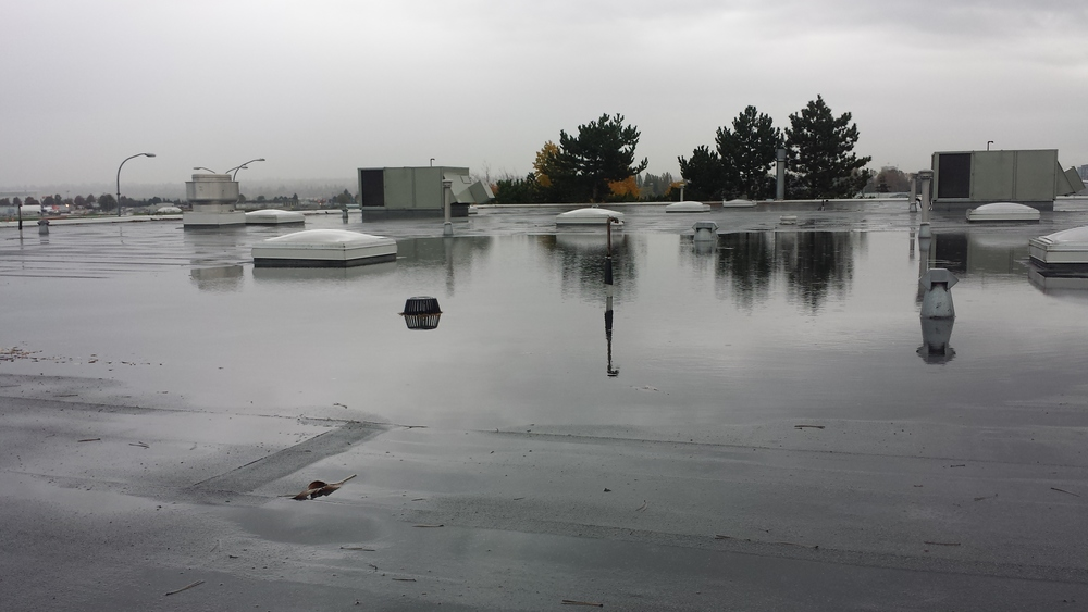 flooded roof (2).jpg