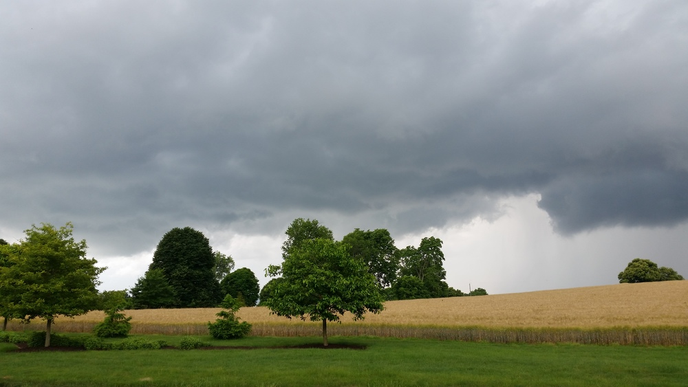 Summer storm on the horizon.