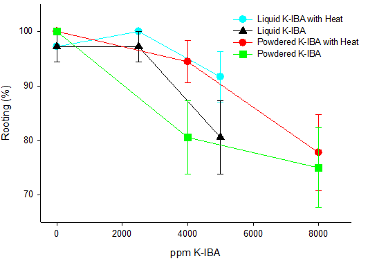 Figure 4 – Rooting percentage based on powder or liquid concentrations and the addition or absence of root zone heat.