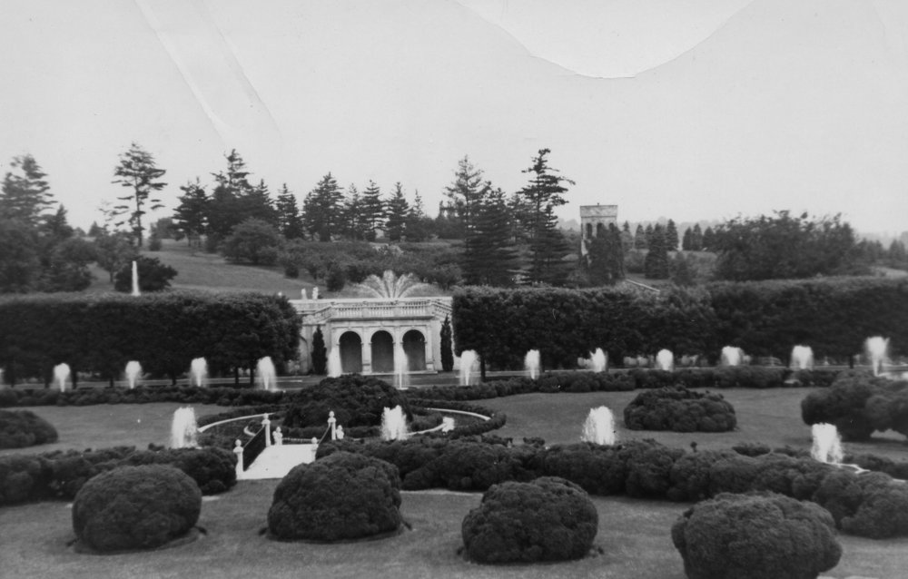 Image of the Main Fountain Garden in 1930 showcasing the mature boxwood specimens Mr. du Pont had brought in. Image courtesy of the Longwood Gardens Archives.