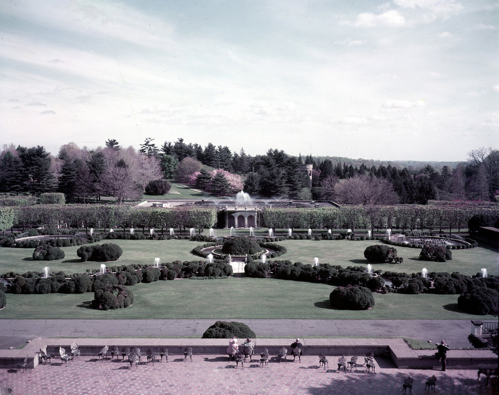 The Main Fountain Garden as seen in 1950. Photo by Gottlieb Hampfler, courtesy of the Longwood Gardens Archives.