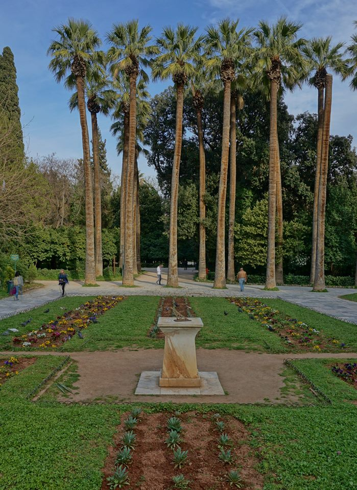 Upon entry to the gardens you're welcomed with towering Washingtonia palms with formal bedding of winter annuals including Viola and Matthiola enjoying the cool springtime sunshine.