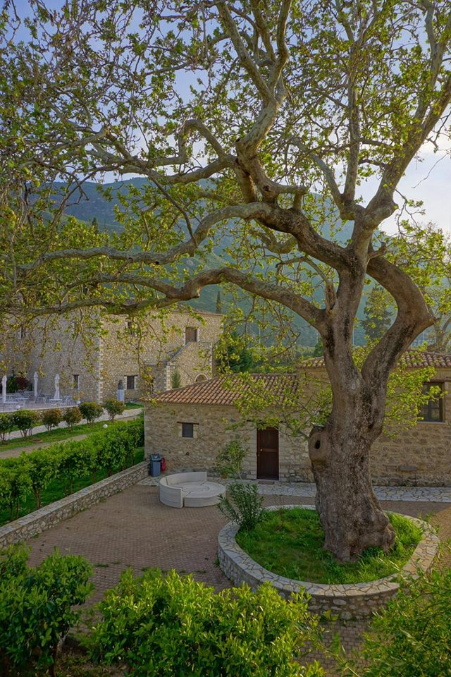 And finally back down to sea level on the eastern side of the Peloponnese peninsula to stay the night in a traditional hotel set right in a grove of Citrus. This mighty Platanus sets the tone for the stone buildings...all with a view of the mountains that were just explored today.— at Semantron Hotel