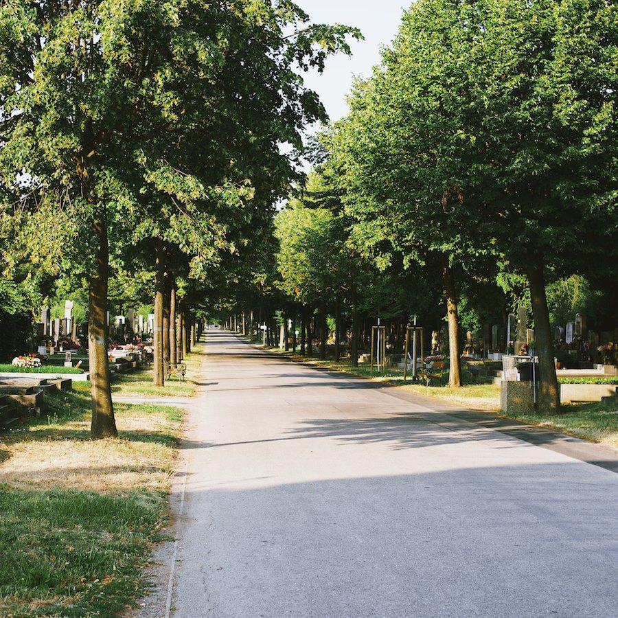 Zentralfriedhof1