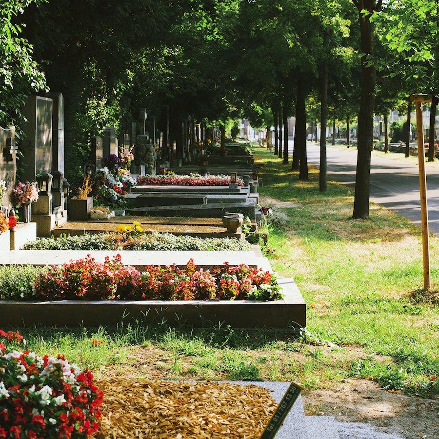 Zentralfriedhof 6