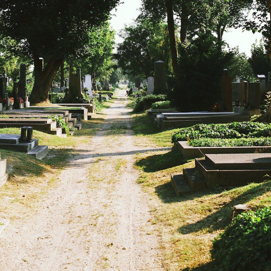 Zentralfriedhof 8