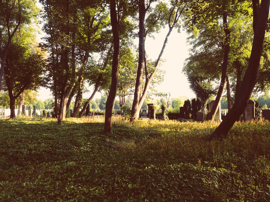 Zentralfriedhof iphone