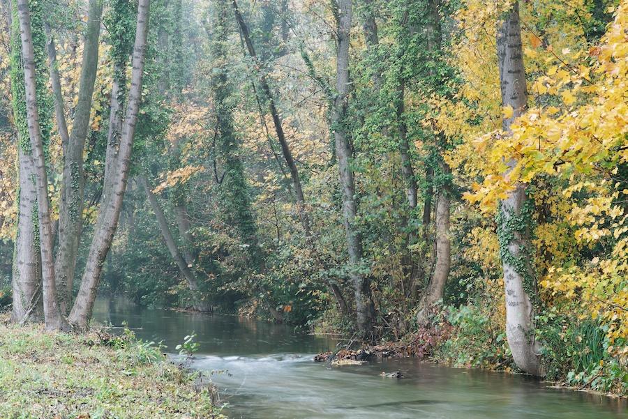 Herbstfarben 6