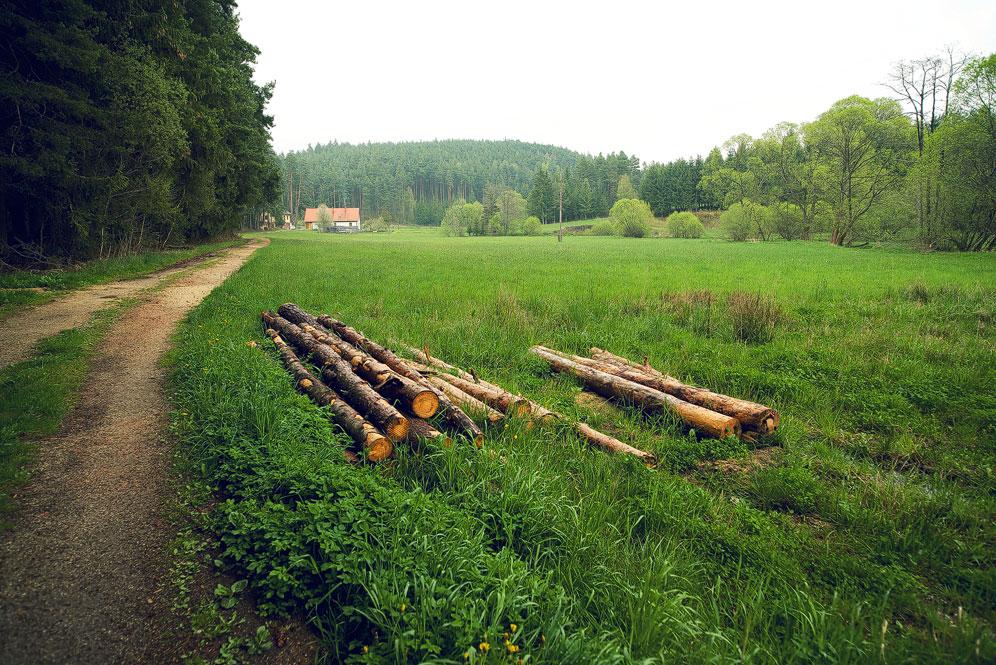 Lohnbachfall_14.jpg