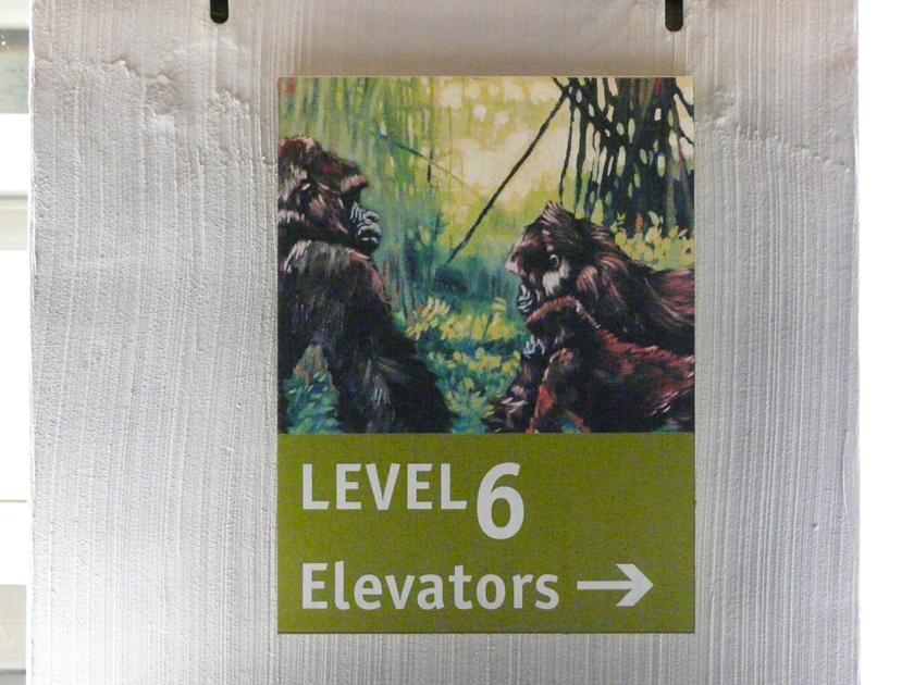 Floor 6 dir sign.jpg