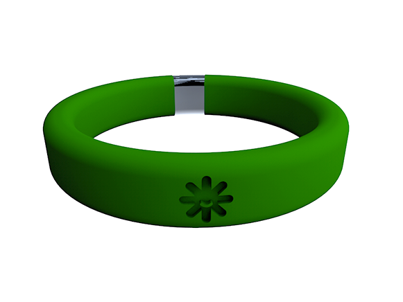 Belay Band_Wristband Container_Green.png