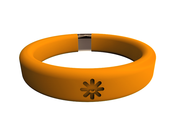 Belay Band_Wristband Container_Orange.png