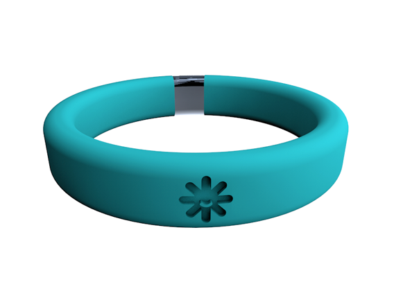 Belay Band_Wristband Container_Turquoise.png